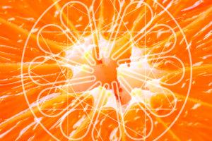 arancia codici Logogenesi