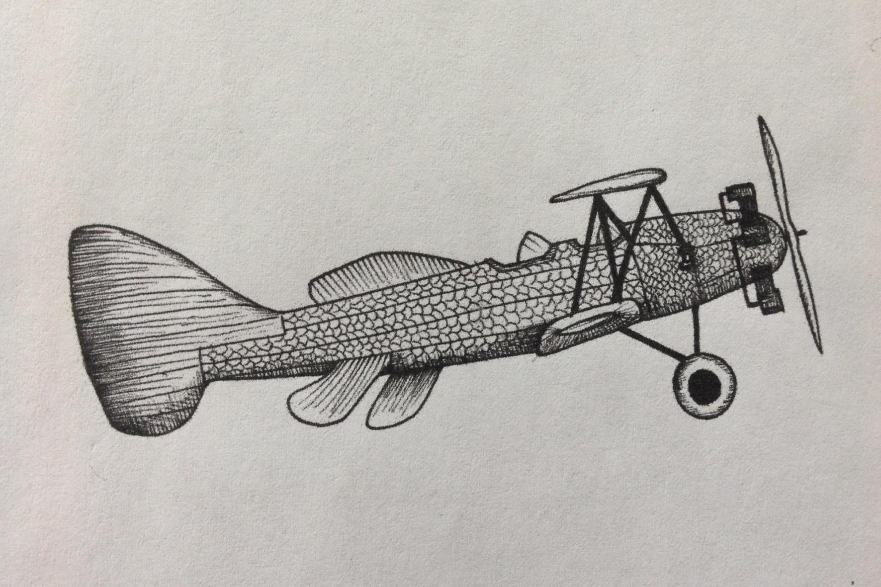 aereo-pesce