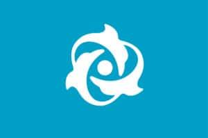 delfino-elica