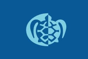 tartaruga-logogenesi