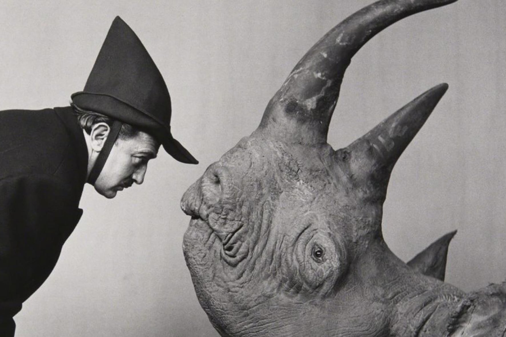 dalì-rinoceronte