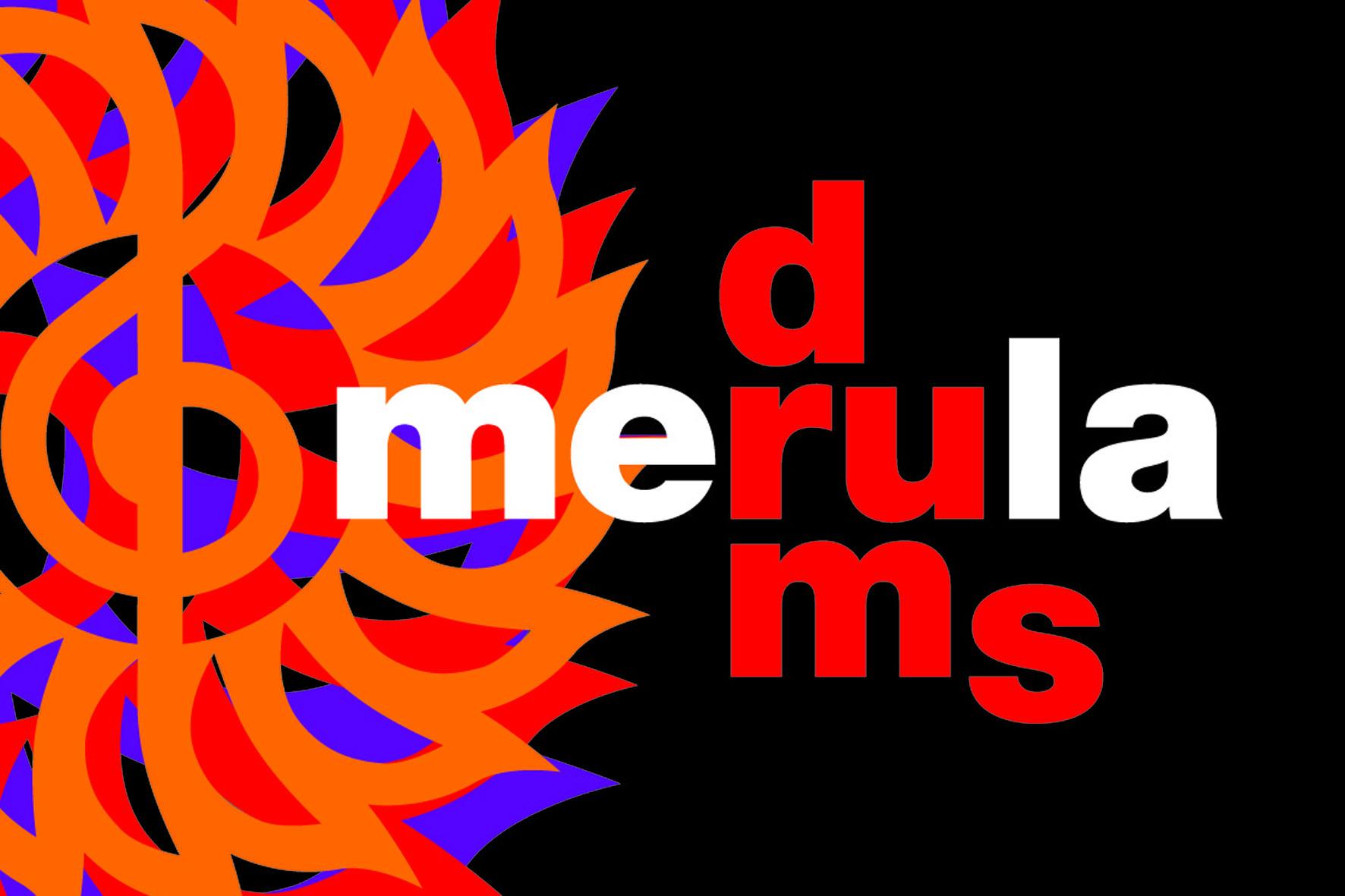 Merula-drums-logogenesi