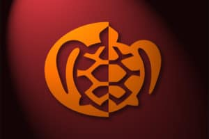 Tashigar-simbolo-traduttore-simultaneo