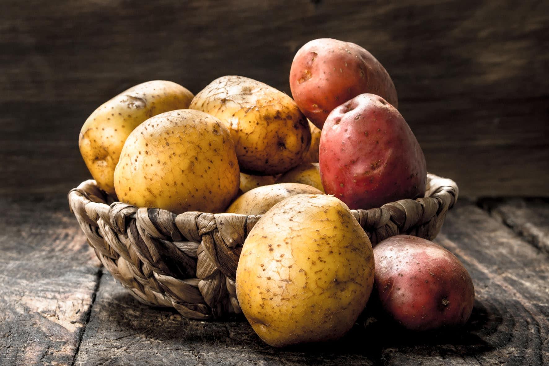 patata-kartoffel