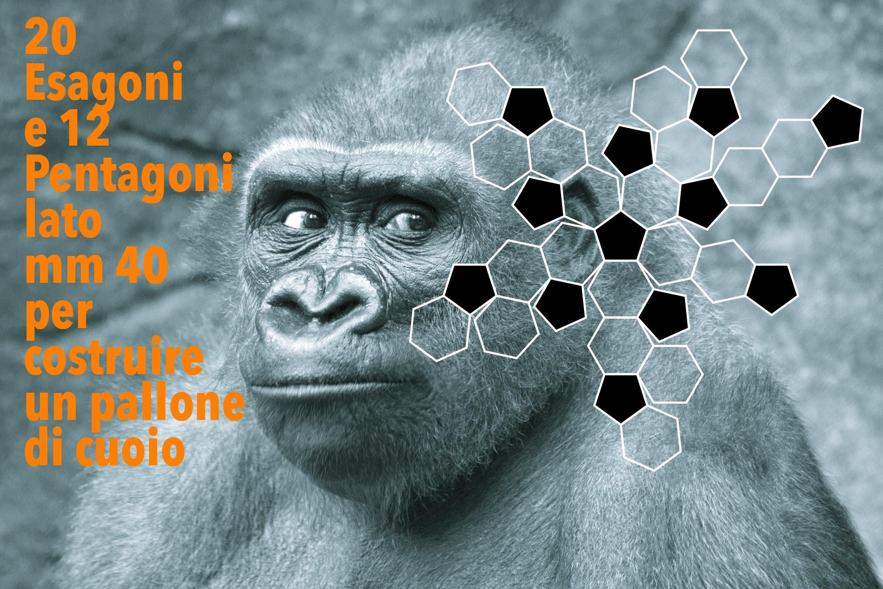 scimmia-calcio-razzismo