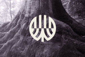 radici-albero-logogenesi