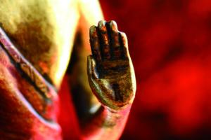 muda-gesti-primordiali